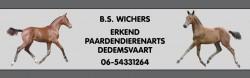 Bert_Wichers